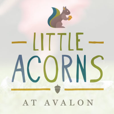 Little Acorns- Literacy Day at Avalon