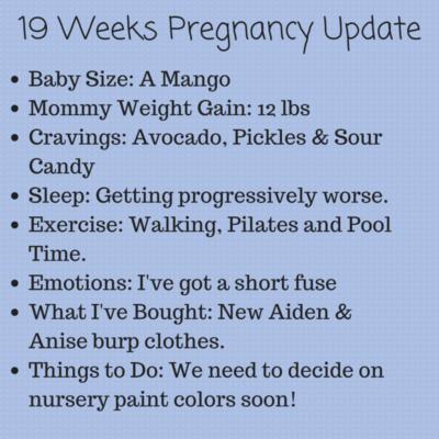 Bumpdate: 19 Weeks Pregnant