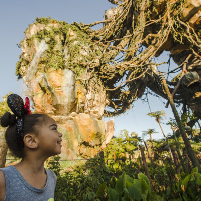 New Disney World Attractions for Young Kids
