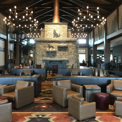 10 Awesome Family Things to Do at Great Wolf Lodge Georgia