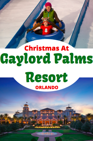 Celebrate Christmas, in Orlando, at Gaylord Palms Resort. Featuring an ice show, Cirque Du Soliel and so much more.