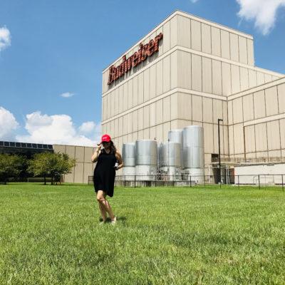 Anheuser-Busch Brewery Beermaster Tour in Cartersville