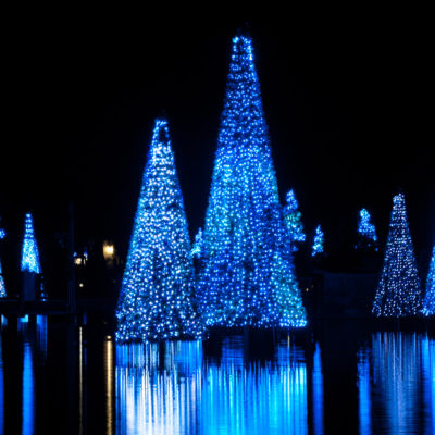 Christmas at SeaWorld Orlando 2018: More Lights Than Ever Before