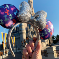 2019 Run Disney Princess Half Marathon Weekend Merchandise