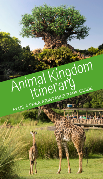 Animal Kingdom Itinerary: Plan the ideal day at Disney's Animal Kingdom with this itinerary. Plus, print a FREE park guide to help you plan the day! #AnimalKingdom #WaltDisneyWorld #DisneyWorldPlanning #DisneyWorldVacation #DisneyTips #DisneyWorldTips