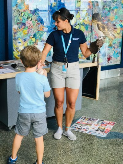 South Carolina Aquarium Tours, South Carolina Aquarium Educational Programs, South Carolina Aquarium Visiting Tips