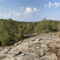 Panola Mountain State Park Events: Thrills For Kids Of All Ages