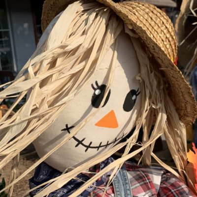 Woodstock GA Events: October Scarecrows Invasion