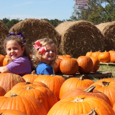 Fun Things To Do In McDonough With Kids (And All Of Henry County)