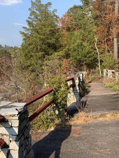 Panola Mountain State Park, Panola Mountain State Park events, Panola Mountain Things to do with kids