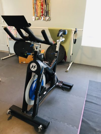 Best spin bike on a budget, budget-friendly spin bike, Horizon Fitness, Horizon Fitness Spin Bike
