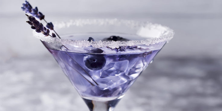 Lavender & Blueberry Gin Cocktail