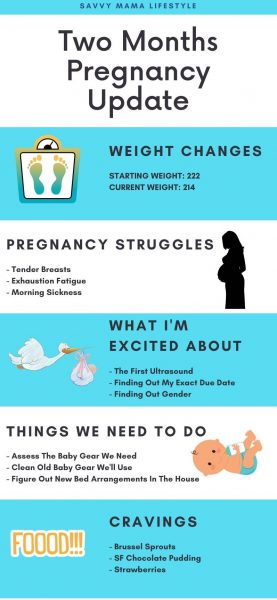Two Month Pregnancy Update, Pregnancy Diary, Monthly Pregnancy Update