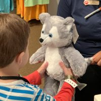 Build-A-Bear Workshop At Great Wolf Lodge: Prices + Options