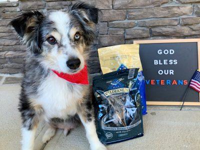 BLUE Buffalo Dog Food For Seniors