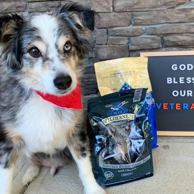 How Blue Buffalo® Dog Food Supports Our Senior Canine (AND Veterans!)