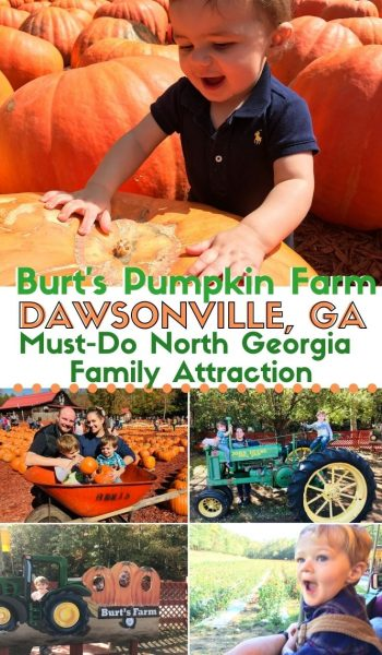Everything you need to know about planning a visit to Burt's Pumpkin Farm in Dawsonville, Georgia. It's a must-do North Georgia family attraction that the kids love. #Georgia #FamilyTravel #Travel #Fall #PumpkinPicking