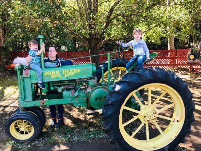 Burt's Pumpkin Farm, Burt's Pumpkin Patch, North Georgia Pumpkin Patch