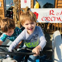 R&A Orchards: Can't Miss North Georgia Roadside Attraction
