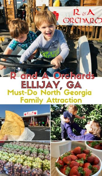Planning a trip to North Georgia? See why R and A Orchards is a must do for families all year round. #NorthGeorgia #GeorgiaTravel #ExploreGeorgia