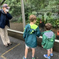 COVID-Friendly Zoo Atlanta
