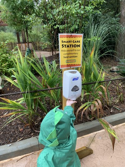 Hand Sanitizing, Staying Healthy, Zoo Atlanta 2020
