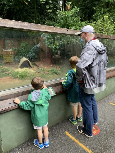 Covid-Friendly Zoo Atlanta 2020