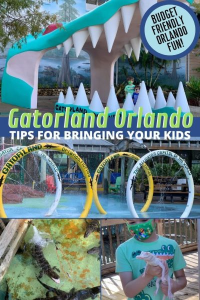 Gatorland Orlando Review: Wondering if Gatorland is worth it with kids? Read the best tips for bringing kids and everything they can do in the park. #Gatorland #Orlando #FamilyTravel #BudgetTravel