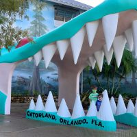 Is Gatorland Worth It With Kids, Gatorland Orlando, Orlando With Kids