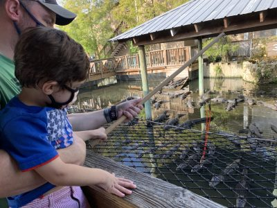 Is Gatorland Worth It With Kids?