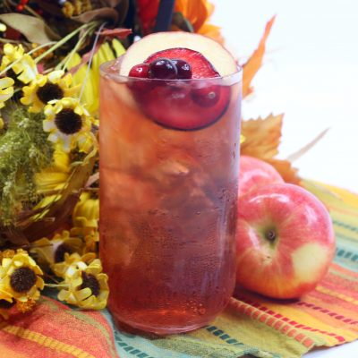 Thirst Quenching Plum Apple Cider Toddy Cocktail Recipe