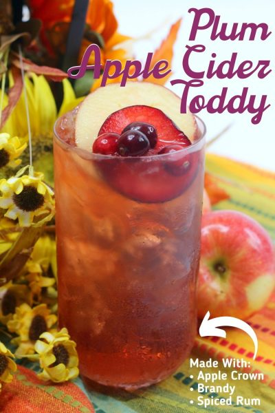 Mixed with Brandy, Spiced Rum and Apple Crown, this Plum Apple Cider Toddy cocktail recipe is the perfect thirst quencher for fall. #ToddyRecipe #FallCocktailRecipe #AppleCider #AppleCiderCocktail